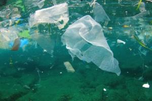 Как борются с пластиком в странах мира