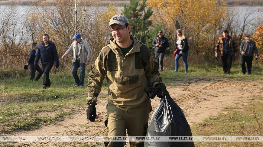 «Чистый лес» в Беларуси