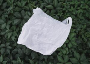 Пластик лучше бумаги? Как хлопковые сумки вредят природе?