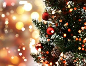 Как выбрать ёлку и отметить Новый Год без вреда для экологии